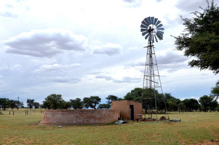Landschaft in Namibia mit viel Gras und ein paar Bäumen. In der Mitte ein Brunnen und eine Windturbine.